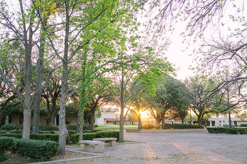 Picture of the campus at sunrise